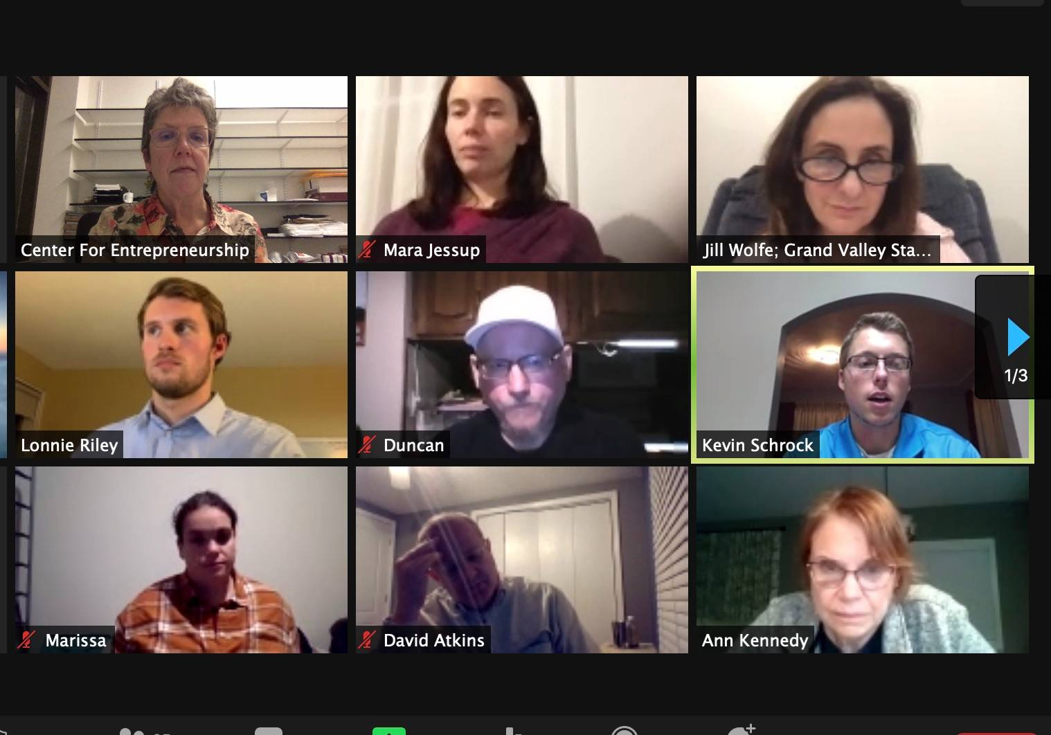 participants of MVE-Lab on a zoom meeting